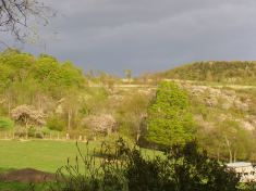 Gazing Up Hopbrew Hill