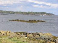Deer Island View